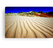 LAND OF SAND Canvas Print