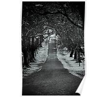 The Dark Path Poster