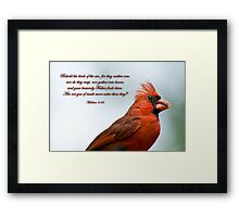 Behold the birds of the air . . . Framed Print