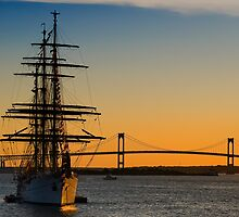Newport Harbor Sunset by owensdp1277