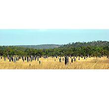 Termite Mound City NT Photographic Print