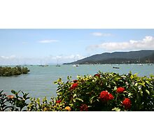 Airlie Beach Flowers Photographic Print