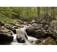 Anna Ruby Falls Creek Photographic Print