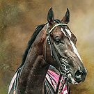 A Racehorse called Venue by Tarrby