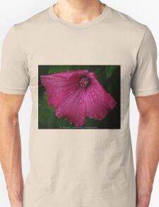 Pretty Pink Flower After a Summer Rain Unisex T-Shirt