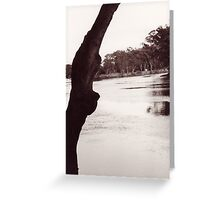 Murray River Greeting Card