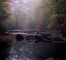 Fall Serenity by Glenn Barnett