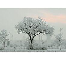 Eerie Days Photographic Print