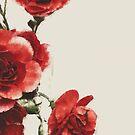 Love Petals by Katayoonphotos