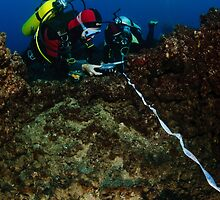 professional Scuba divers perform an underwater survey of the Mediterranean seabed  by PhotoStock-Isra