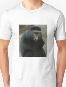 One-Armed Monkey at the Pittsburgh Zoo T-Shirt