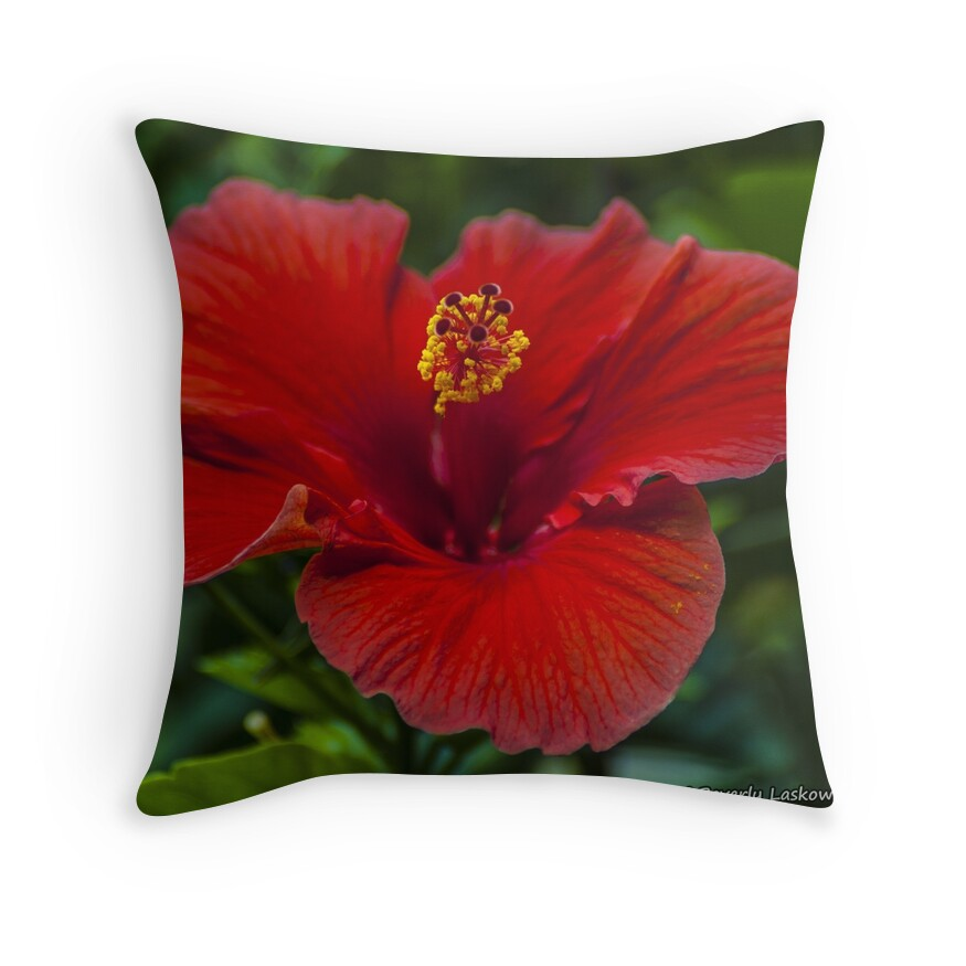 Red Hibiscus Decorative Pillow :