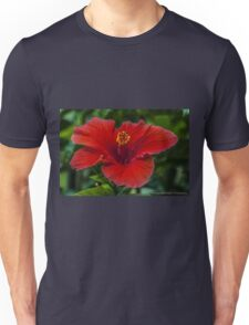 Big Red Hibiscus Flower Unisex T-Shirt