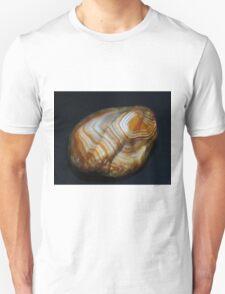 Roof Top Laker Unisex T-Shirt