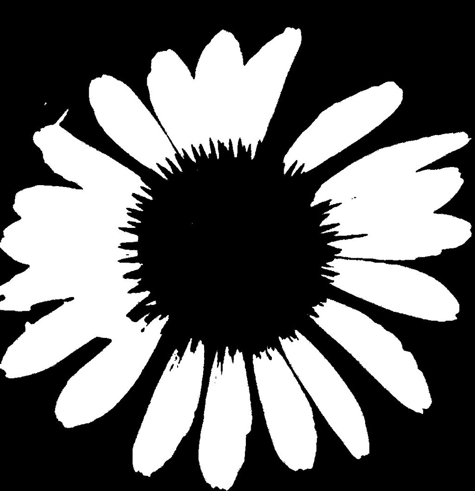 Daisy Crazy - Black & White by brattigrl