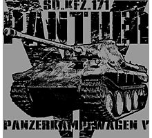 Panther V Photographic Print