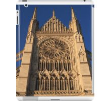 Cathedral In Evening Light iPad Case/Skin