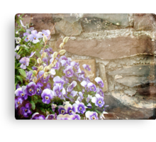 Pansies and Pussywillows Canvas Print