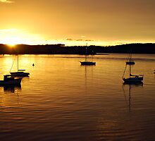 Batemans Bay Sunrise by Peta Jade