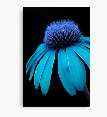 Blue Power Canvas Print