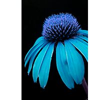Blue Power Photographic Print