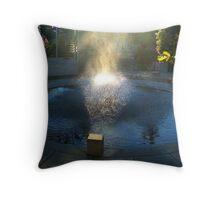 Fountain spray Throw Pillow
