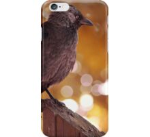 The Autumn Crow iPhone Case/Skin