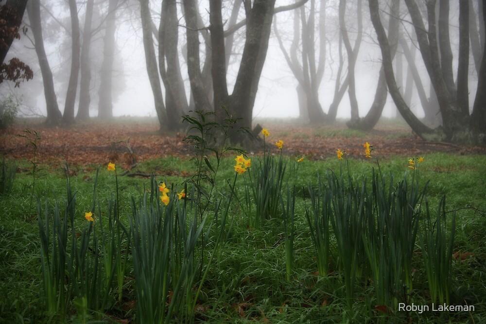 Winter daffodils by Robyn Lakeman