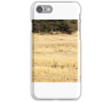 Four ostrich, two blesbuck and a........ secretary bird? iPhone Case/Skin