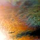 Iridescent cloud and aircraft. by Ern Mainka