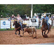 Round Up Rodeo Photographic Print