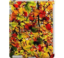 Abstract Autumn iPad Case/Skin
