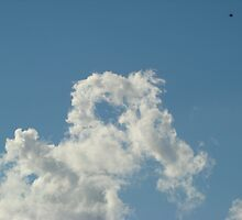 Heart in Cloud by Sharon Robertson