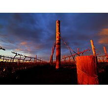 Rutherglen Estate Winery Photographic Print