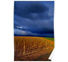 Rutherglen Winery at sunset Poster