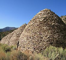 The Wildrose Charcoal Kilns by Gili Orr
