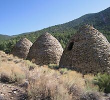 The Wildrose Charcoal Kilns - 2 by Gili Orr