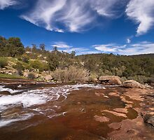 Hovea Falls by Claire  Farley