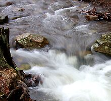 Rushing Water by denise romano