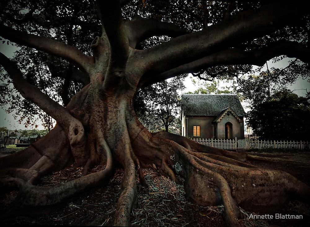 Tree House by Annette Blattman