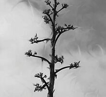 Bonsai by leithel