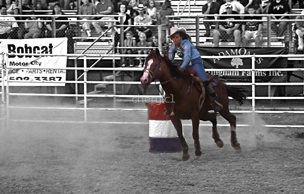 The rodeo- select color by cherylc1