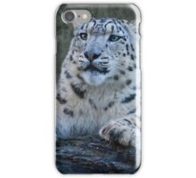 Snow Leopard Dreams iPhone Case/Skin