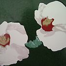 Orchids by Susan Brown