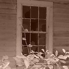 Broken Window  by kat  -