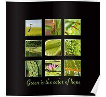 Green is the color of hope Poster