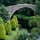 The Auld Brig o' Doon by ElsT