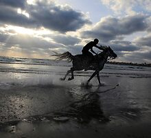 Silhouette of a man riding a horse on the beach  by PhotoStock-Isra