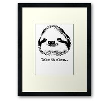 Take it slow.... Framed Print