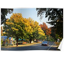 Delany Avenue - Bright Poster